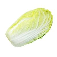 桂林大白菜-生鲜蔬菜配送